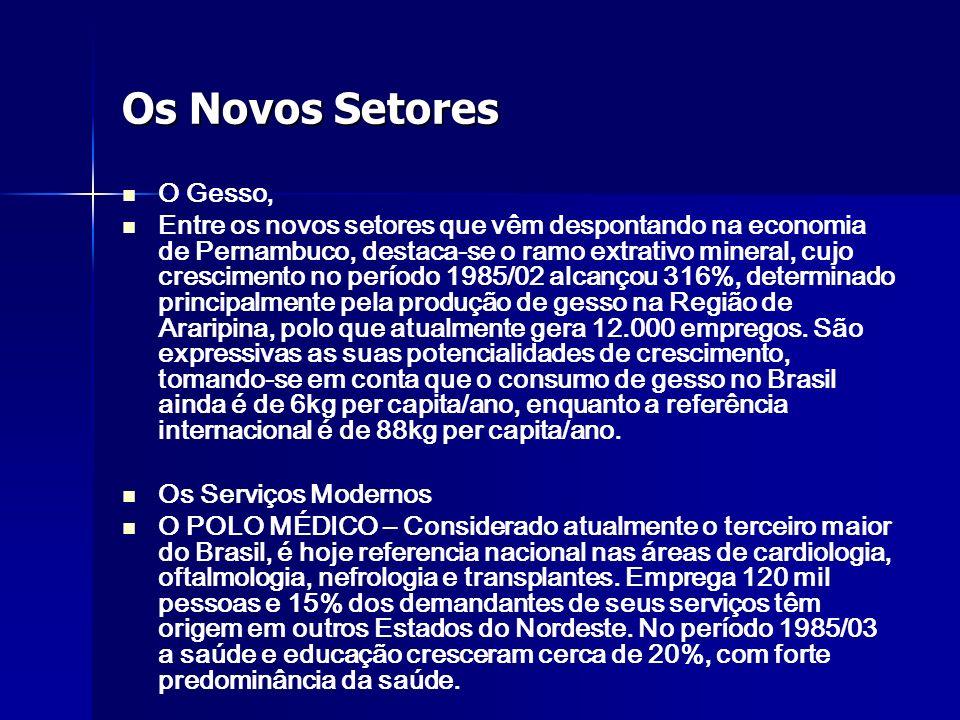 Os Novos Setores O Gesso, Entre os novos setores que vêm despontando na economia de Pernambuco, destaca-se o ramo extrativo mineral, cujo crescimento