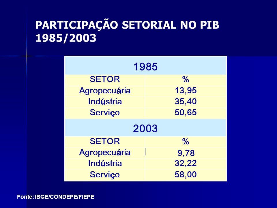 PARTICIPAÇÃO SETORIAL NO PIB 1985/2003 58,00Servi ç o 32,22 Ind ú stria 9,78 Agropecu á ria %SETOR 2003 50,65Servi ç o 35,40Ind ú stria 13,95Agropecu