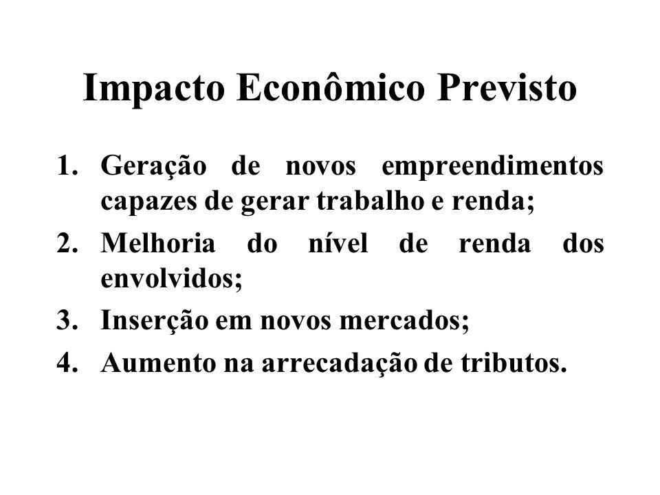 Impacto Econômico Previsto 1.Geração de novos empreendimentos capazes de gerar trabalho e renda; 2.Melhoria do nível de renda dos envolvidos; 3.Inserção em novos mercados; 4.Aumento na arrecadação de tributos.