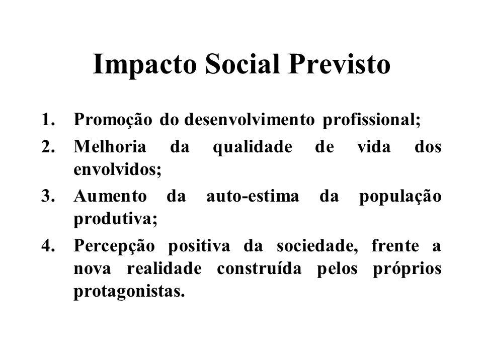 Impacto Social Previsto 1.Promoção do desenvolvimento profissional; 2.Melhoria da qualidade de vida dos envolvidos; 3.Aumento da auto-estima da população produtiva; 4.Percepção positiva da sociedade, frente a nova realidade construída pelos próprios protagonistas.