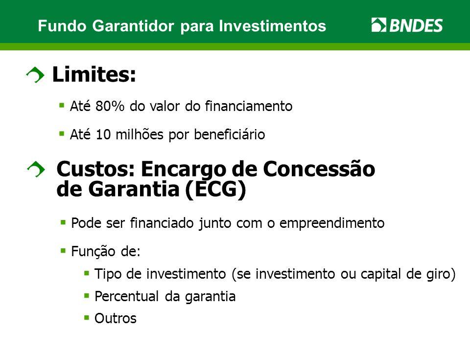Limites: Até 80% do valor do financiamento Até 10 milhões por beneficiário Custos: Encargo de Concessão de Garantia (ECG) Pode ser financiado junto com o empreendimento Função de: Tipo de investimento (se investimento ou capital de giro) Percentual da garantia Outros Fundo Garantidor para Investimentos