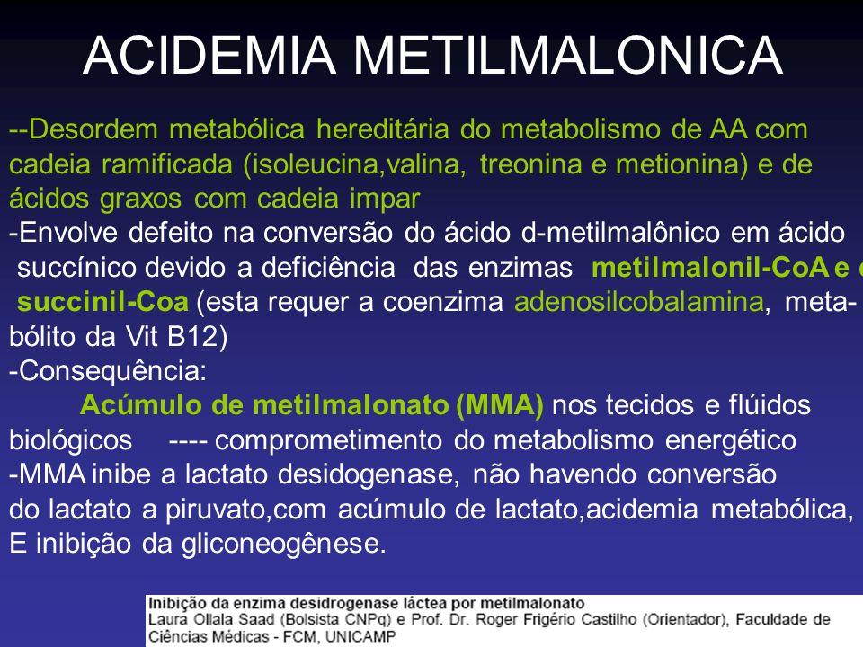 ACIDEMIA METILMALONICA --Desordem metabólica hereditária do metabolismo de AA com cadeia ramificada (isoleucina,valina, treonina e metionina) e de áci