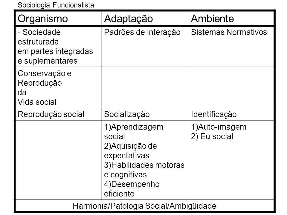 Sociologia Funcionalista OrganismoAdaptaçãoAmbiente - Sociedade estruturada em partes integradas e suplementares Padrões de interaçãoSistemas Normativ