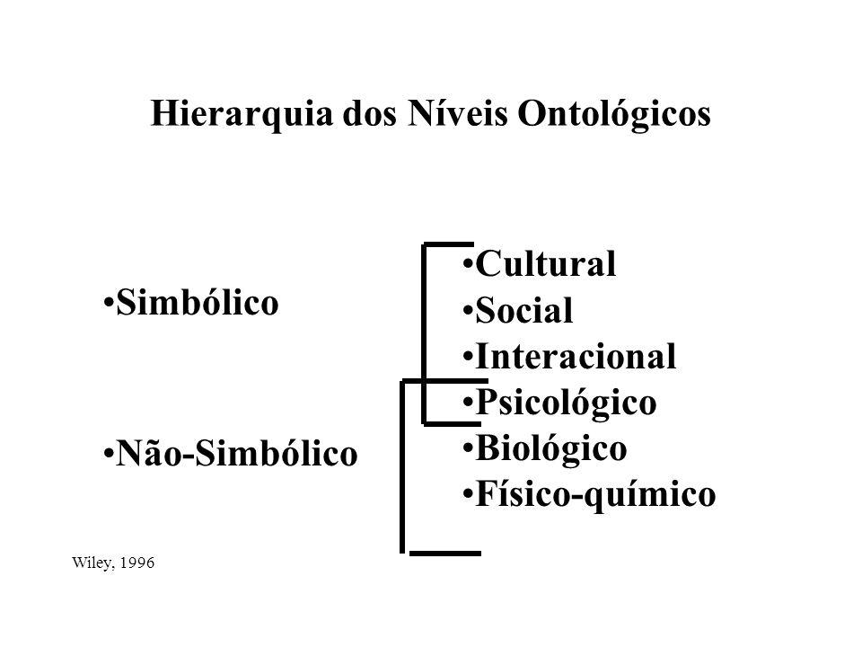 Hierarquia dos Níveis Ontológicos Cultural Social Interacional Psicológico Biológico Físico-químico Simbólico Não-Simbólico Wiley, 1996