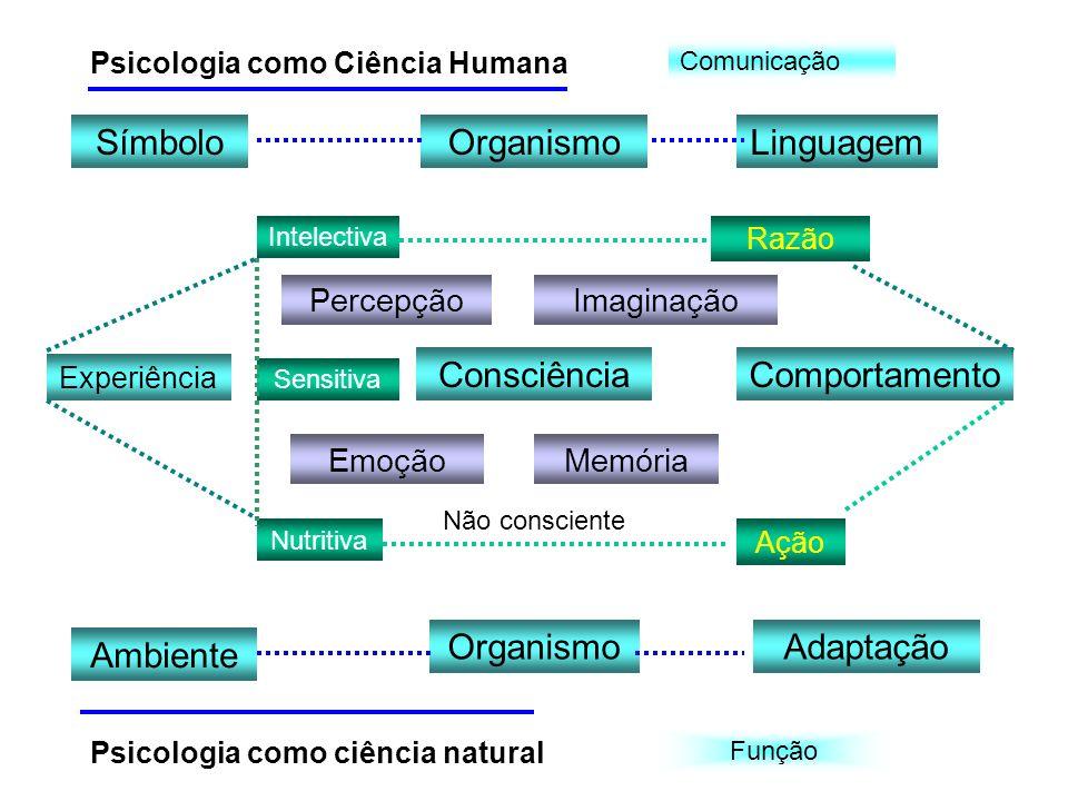 Experiência Sensitiva ConsciênciaComportamento Intelectiva Nutritiva SímboloOrganismoLinguagem Ambiente OrganismoAdaptação PercepçãoImaginação EmoçãoM