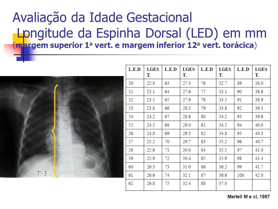 Avaliação da Idade Gestacional Longitude da Espinha Dorsal (LED) em mm (margem superior 1 a vert. e margem inferior 12 a vert. torácica) L.E.DI.GES T.