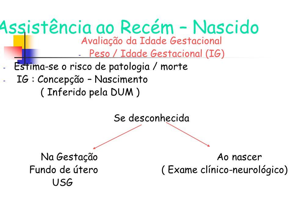 Assistência ao Recém – Nascido Avaliação da Idade Gestacional - Peso / Idade Gestacional (IG) - Estima-se o risco de patologia / morte - IG : Concepçã