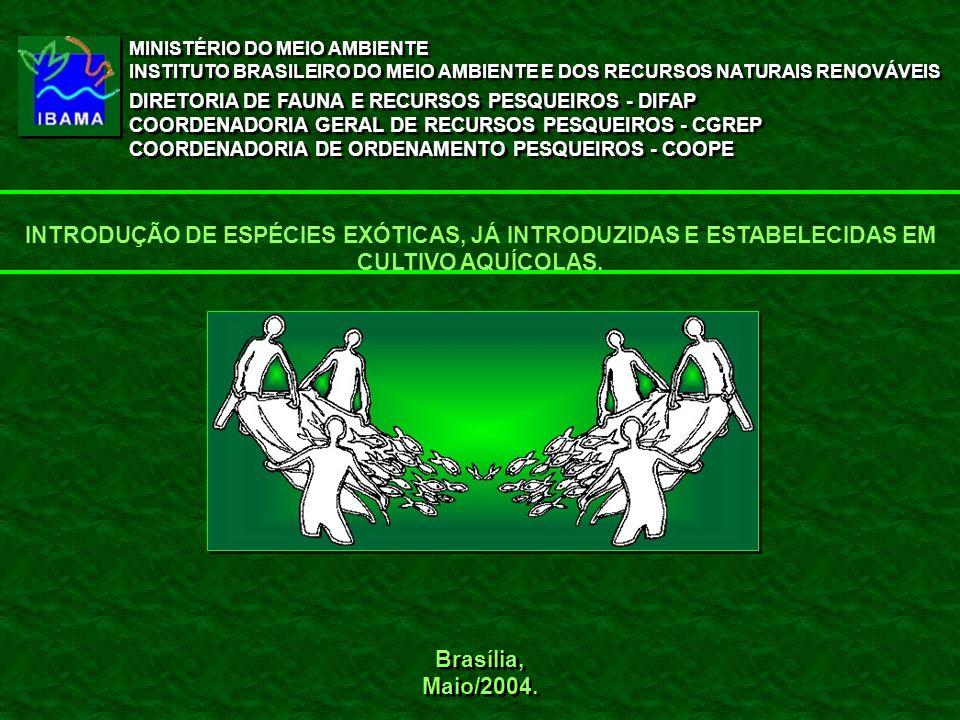 Brasília, Maio/2004. Brasília, Maio/2004. MINISTÉRIO DO MEIO AMBIENTE INSTITUTO BRASILEIRO DO MEIO AMBIENTE E DOS RECURSOS NATURAIS RENOVÁVEIS DIRETOR