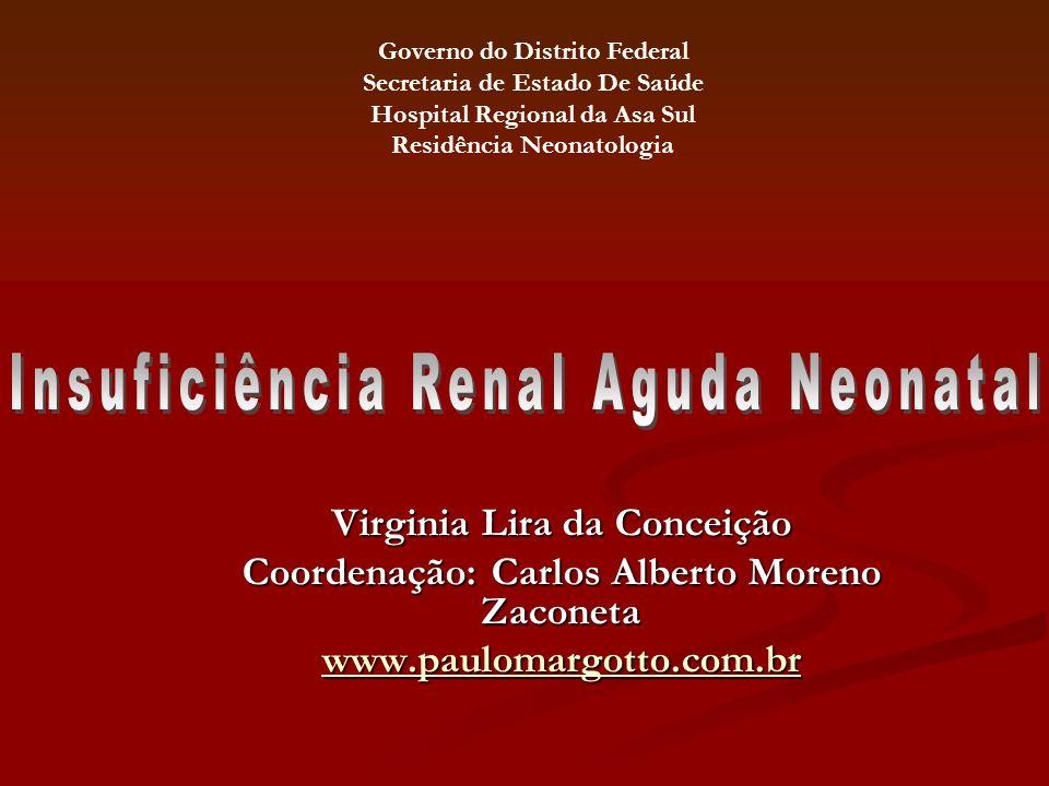 Virginia Lira da Conceição Coordenação: Carlos Alberto Moreno Zaconeta www.paulomargotto.com.br Governo do Distrito Federal Secretaria de Estado De Sa