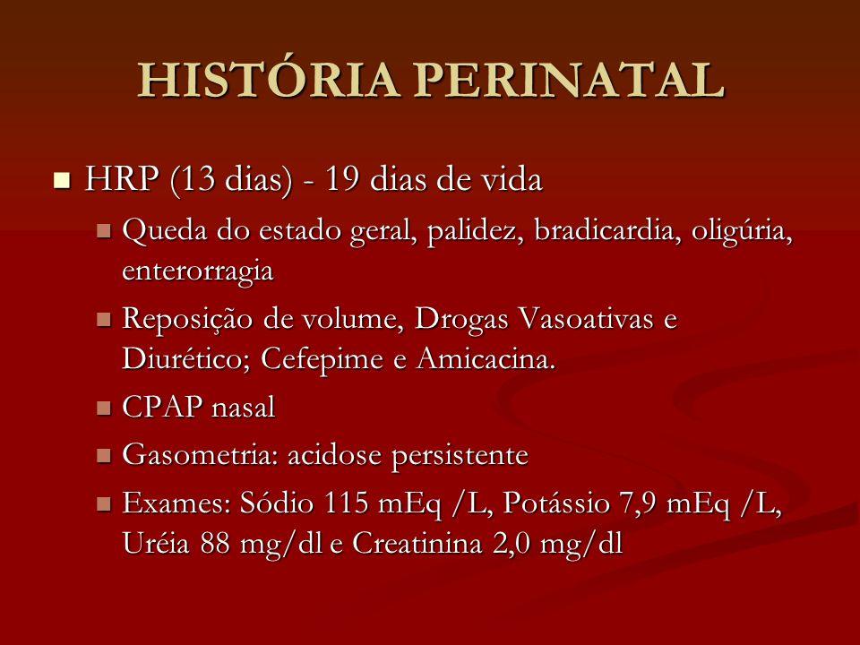 HISTÓRIA PERINATAL HRP (13 dias) - 19 dias de vida HRP (13 dias) - 19 dias de vida Queda do estado geral, palidez, bradicardia, oligúria, enterorragia