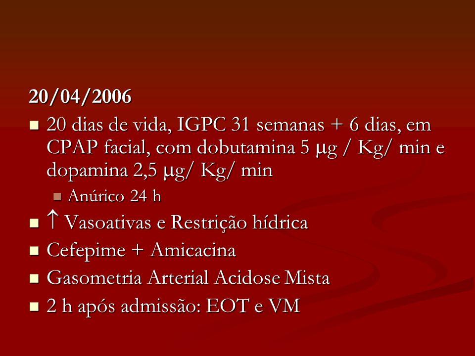 20/04/2006 Radiografia: infiltados pulmonares bilaterais; abdome com hipotransparência difusa Radiografia: infiltados pulmonares bilaterais; abdome com hipotransparência difusa Exames Iniciais Exames Iniciais HCT 34,9 %, Plaquetas normais HCT 34,9 %, Plaquetas normais Número de Leucócitos adequado e Neutrófilos totais diminuídos para idade Número de Leucócitos adequado e Neutrófilos totais diminuídos para idade Hipercalemia (7,5 mEq /L) Hipercalemia (7,5 mEq /L)