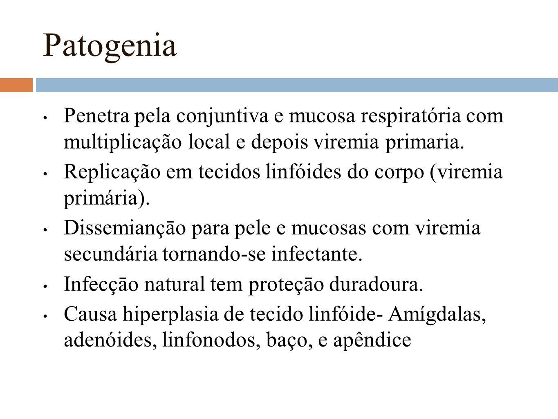 Patogenia Penetra pela conjuntiva e mucosa respiratória com multiplicação local e depois viremia primaria. Replicação em tecidos linfóides do corpo (v