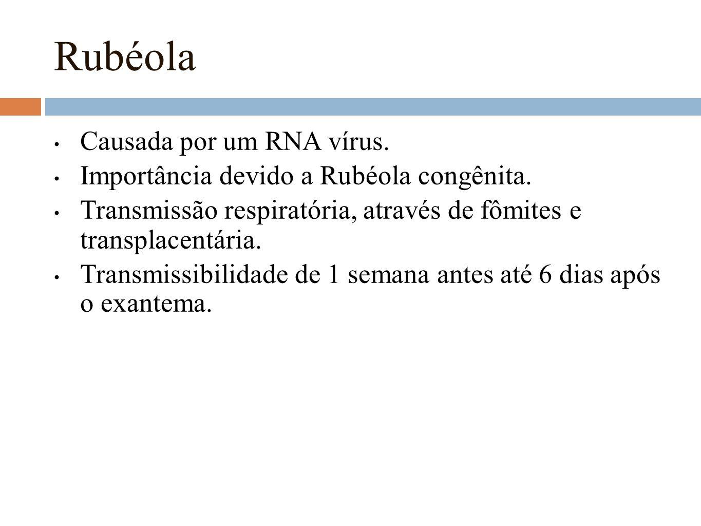 Rubéola Causada por um RNA vírus. Importância devido a Rubéola congênita. Transmissão respiratória, através de fômites e transplacentária. Transmissib