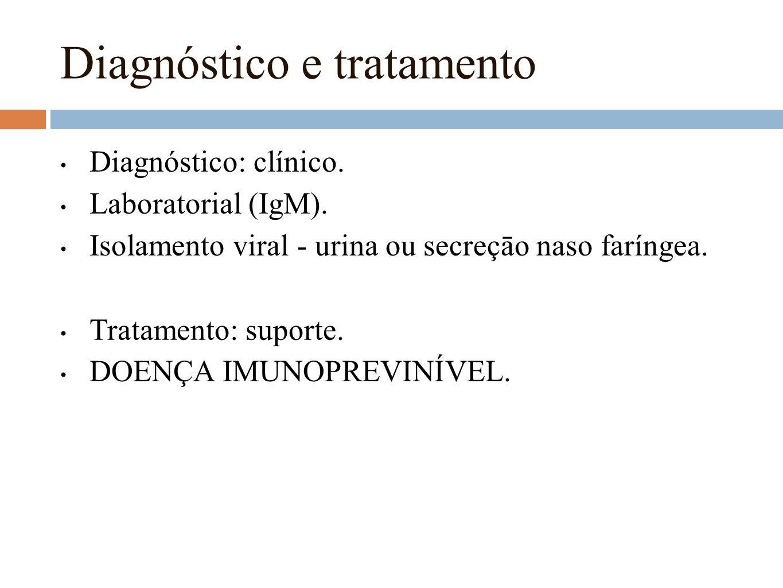Diagnóstico e tratamento Diagnóstico: clínico. Laboratorial (IgM). Isolamento viral - urina ou secreçāo naso faríngea. Tratamento: suporte. DOENÇA IMU