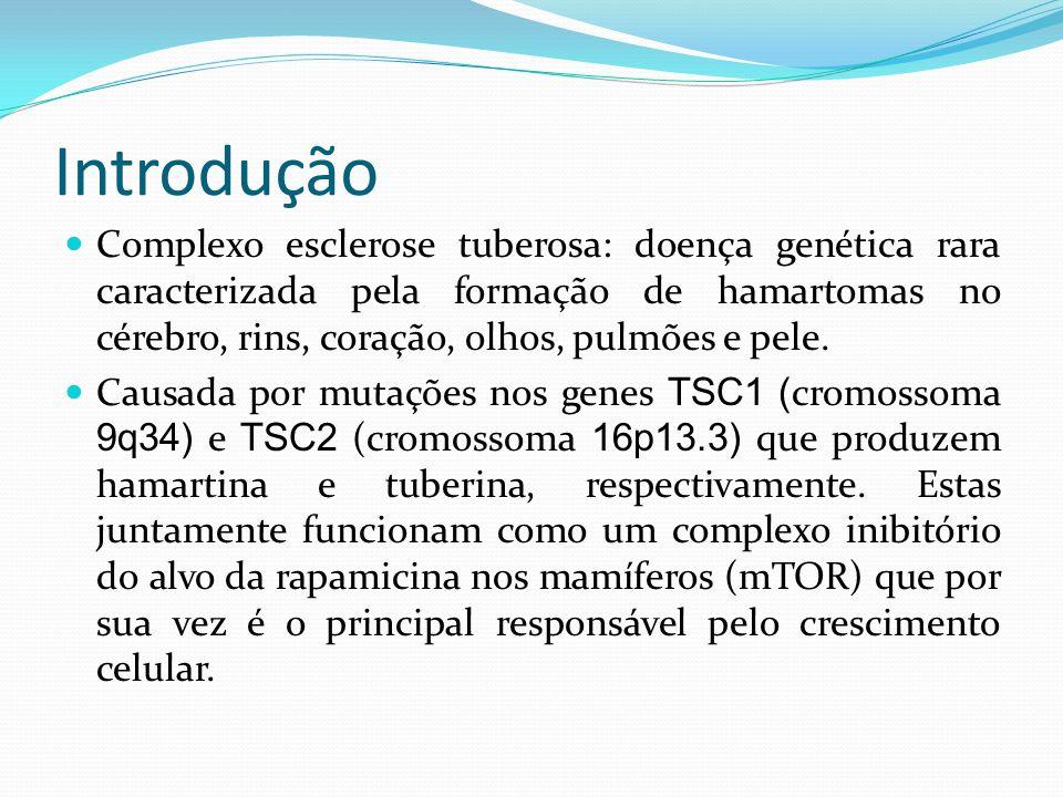 Introdução Complexo esclerose tuberosa: doença genética rara caracterizada pela formação de hamartomas no cérebro, rins, coração, olhos, pulmões e pel