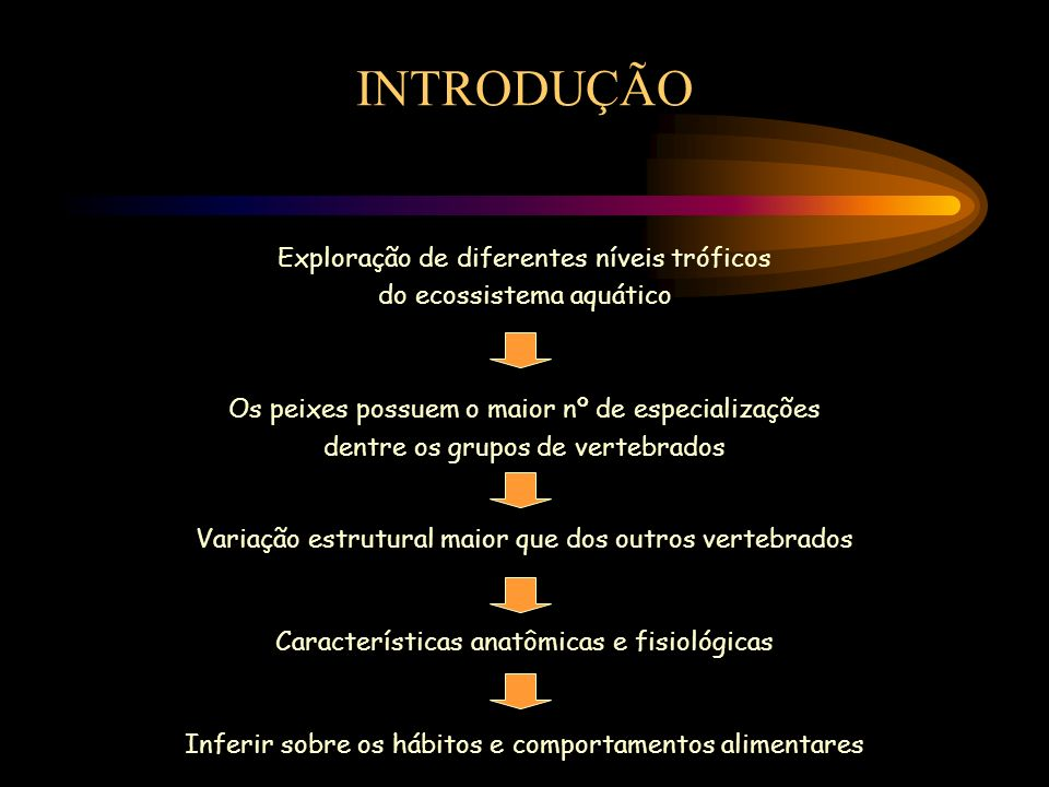HÁBITOS ALIMENTARES 1.