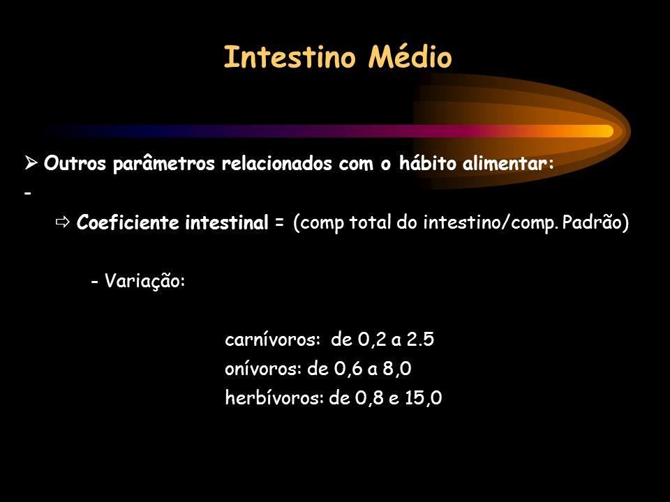 Intestino Médio Outros parâmetros relacionados com o hábito alimentar: - Coeficiente intestinal = (comp total do intestino/comp. Padrão) - Variação: c