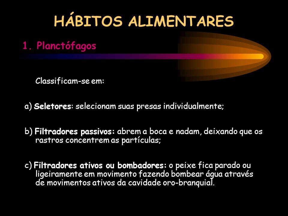 HÁBITOS ALIMENTARES 1. Planctófagos Classificam-se em: a) Seletores: selecionam suas presas individualmente; b) Filtradores passivos: abrem a boca e n