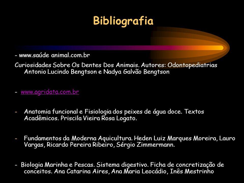 Bibliografia - www.saúde animal.com.br Curiosidades Sobre Os Dentes Dos Animais. Autores: Odontopediatrias Antonio Lucindo Bengtson e Nadya Galvão Ben