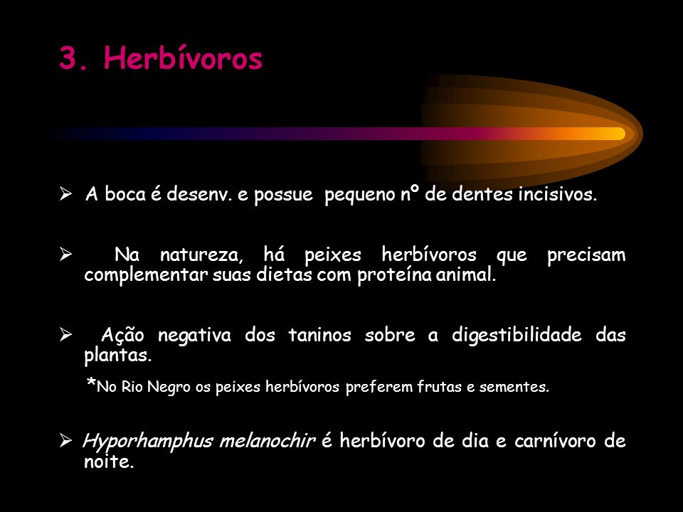 3. Herbívoros A boca é desenv. e possue pequeno nº de dentes incisivos. Na natureza, há peixes herbívoros que precisam complementar suas dietas com pr
