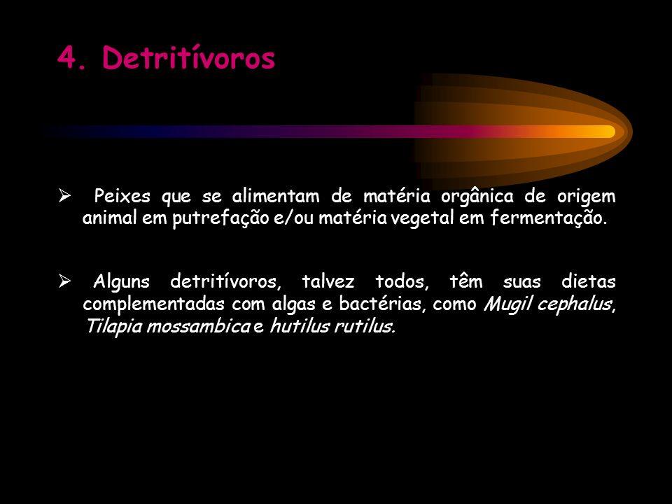 Bibliografia - www.saúde animal.com.br Curiosidades Sobre Os Dentes Dos Animais.