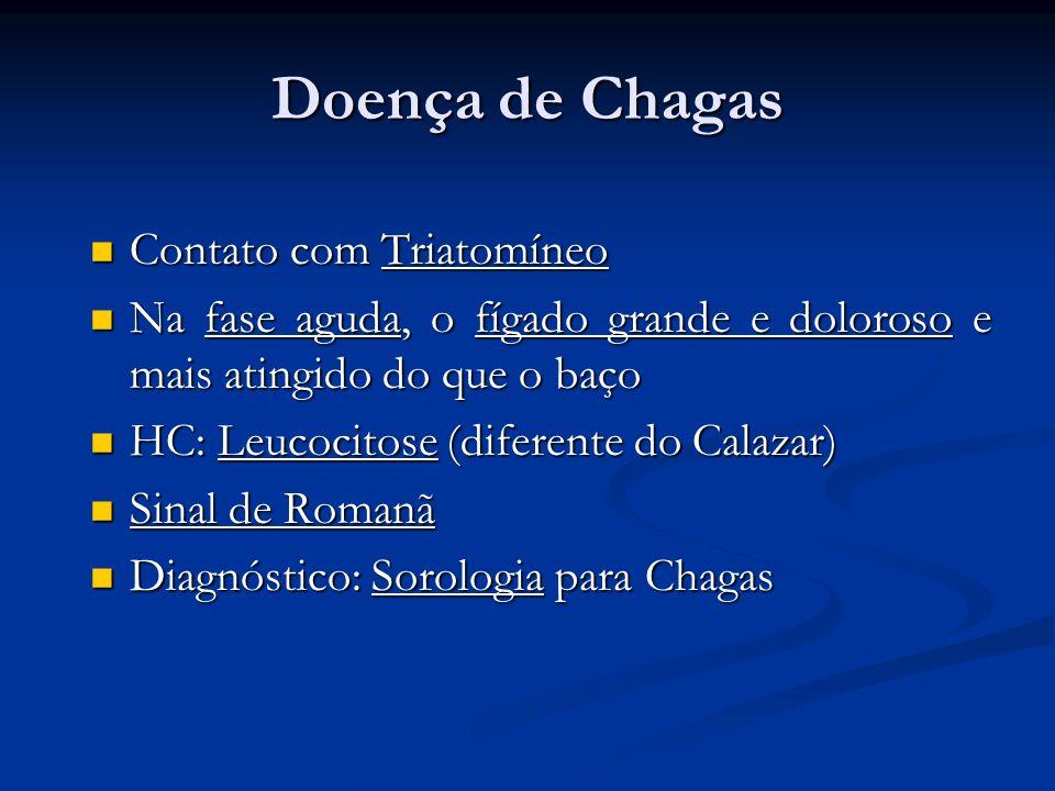 Doença de Chagas Contato com Triatomíneo Contato com Triatomíneo Na fase aguda, o fígado grande e doloroso e mais atingido do que o baço Na fase aguda