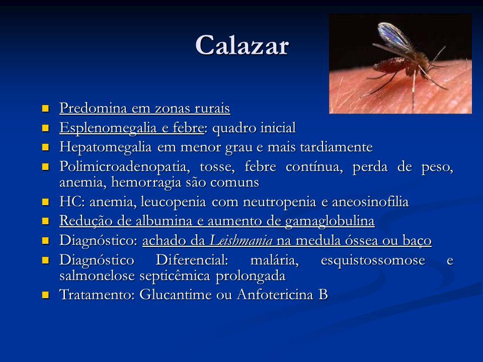Calazar Predomina em zonas rurais Predomina em zonas rurais Esplenomegalia e febre: quadro inicial Esplenomegalia e febre: quadro inicial Hepatomegali