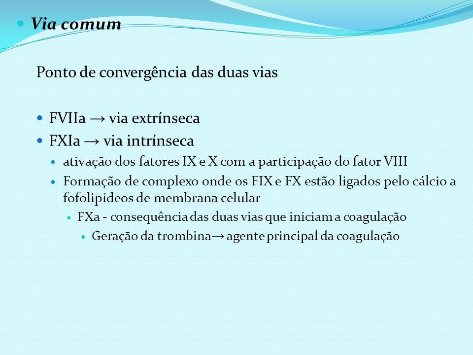 Via comum Ponto de convergência das duas vias FVIIa via extrínseca FXIa via intrínseca ativação dos fatores IX e X com a participação do fator VIII Fo