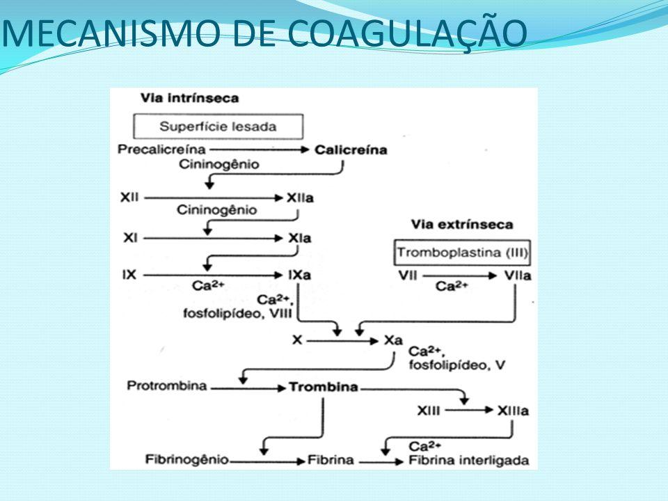 MECANISMO DE COAGULAÇÃO