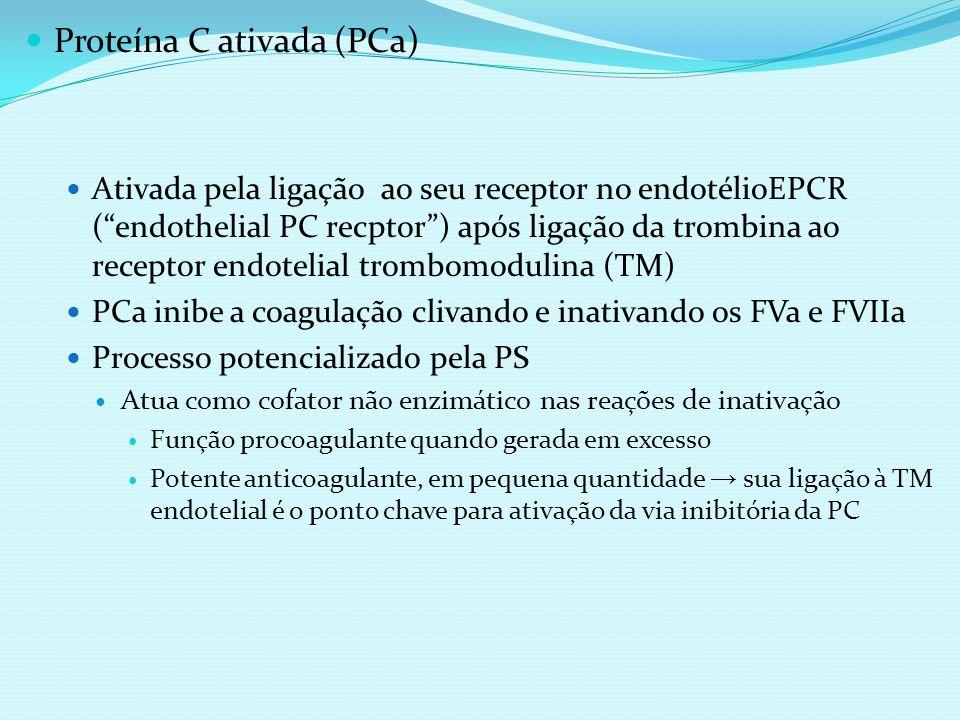 Proteína C ativada (PCa) Ativada pela ligação ao seu receptor no endotélioEPCR (endothelial PC recptor) após ligação da trombina ao receptor endotelia