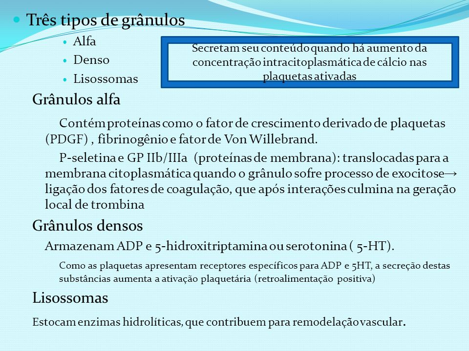 Três tipos de grânulos Alfa Denso Lisossomas Grânulos alfa Contém proteínas como o fator de crescimento derivado de plaquetas (PDGF), fibrinogênio e f