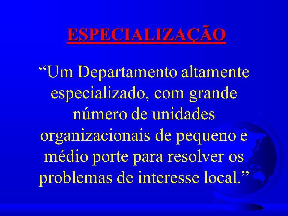 Um Departamento altamente especializado, com grande número de unidades organizacionais de pequeno e médio porte para resolver os problemas de interesse local.