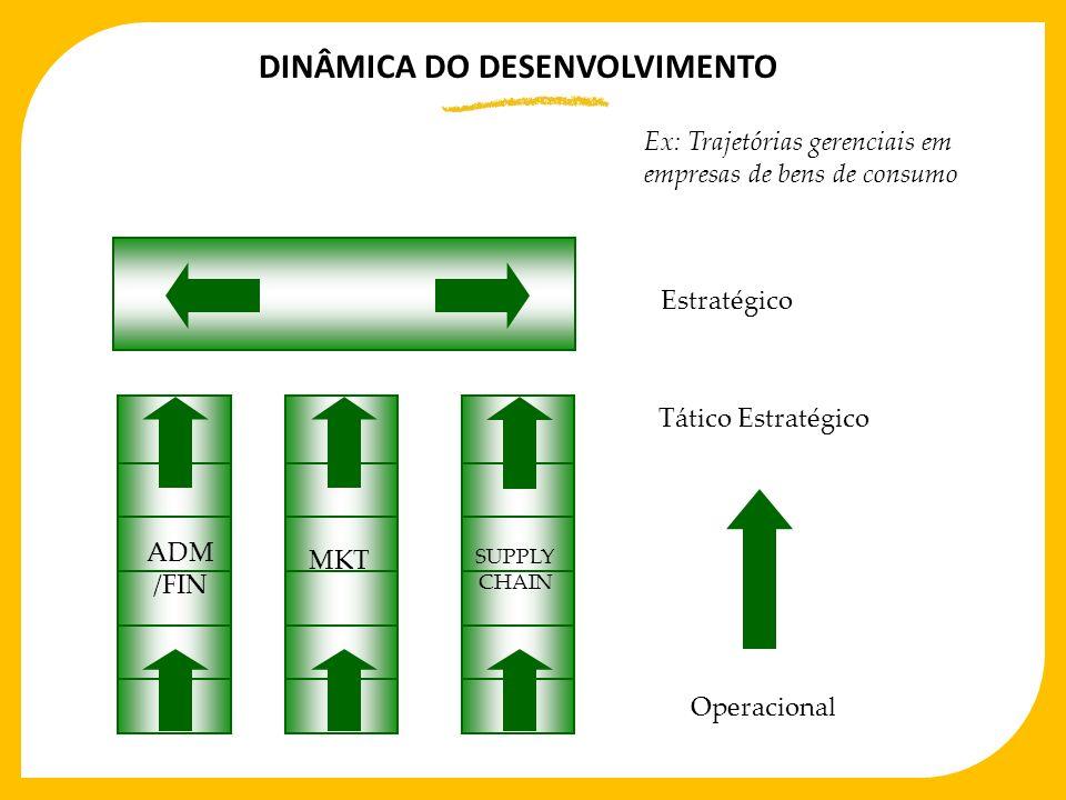 Ex: Trajetórias gerenciais em empresas de bens de consumo ADM /FIN MKT SUPPLY CHAIN Estratégico Tático Estratégico Operacional DINÂMICA DO DESENVOLVIM