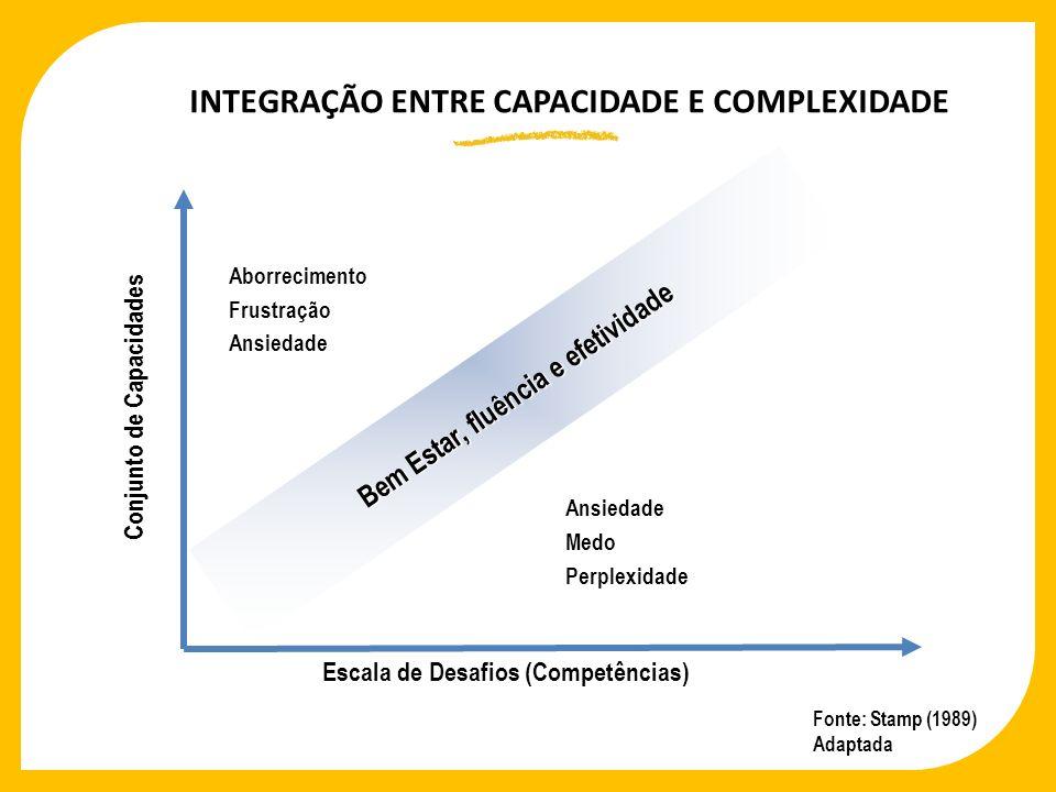 INTEGRAÇÃO ENTRE CAPACIDADE E COMPLEXIDADE Bem Estar, fluência e efetividade Fonte: Stamp (1989) Adaptada Conjunto de Capacidades Escala de Desafios (