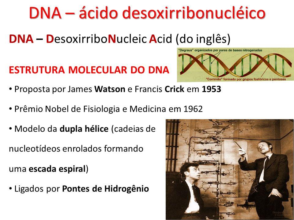 DNA – ácido desoxirribonucléico DNA – DesoxirriboNucleic Acid (do inglês) ESTRUTURA MOLECULAR DO DNA Proposta por James Watson e Francis Crick em 1953