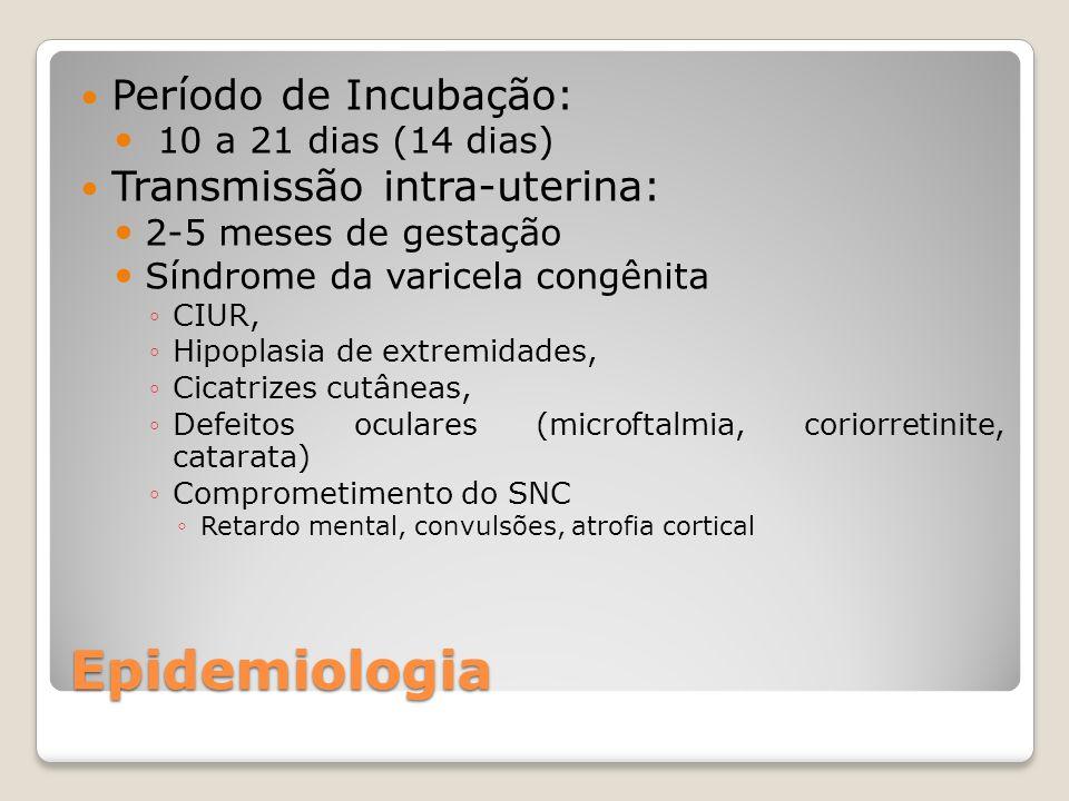 Epidemiologia Período de Incubação: 10 a 21 dias (14 dias) Transmissão intra-uterina: 2-5 meses de gestação Síndrome da varicela congênita CIUR, Hipop