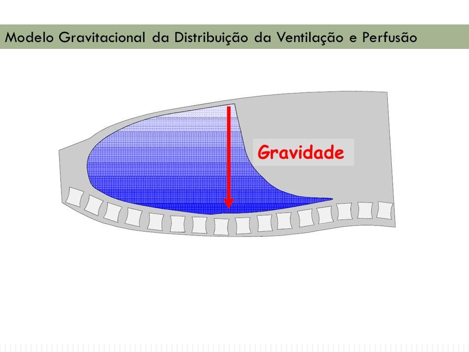 Gravidade Modelo Gravitacional da Distribuição da Ventilação e Perfusão