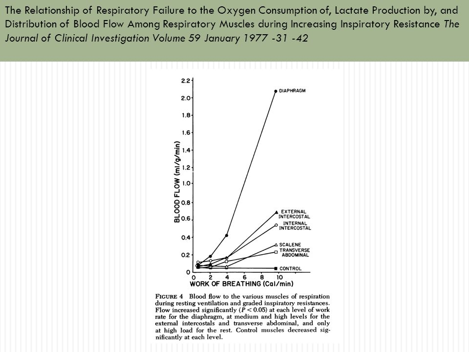 The Relationship of Respiratory Failure to the Oxygen Consumption of, Lactate Production by, and Distribution of Blood Flow Among Respiratory Muscles
