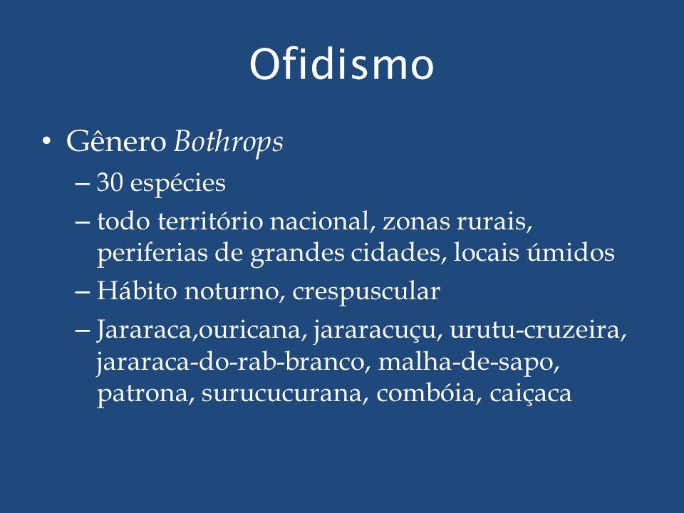 Gênero Bothrops – 30 espécies – todo território nacional, zonas rurais, periferias de grandes cidades, locais úmidos – Hábito noturno, crespuscular –
