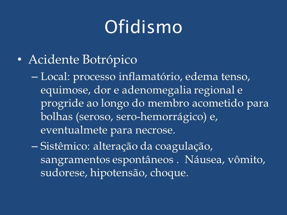 Ofidismo Acidente Botrópico – Local: processo inflamatório, edema tenso, equimose, dor e adenomegalia regional e progride ao longo do membro acometido