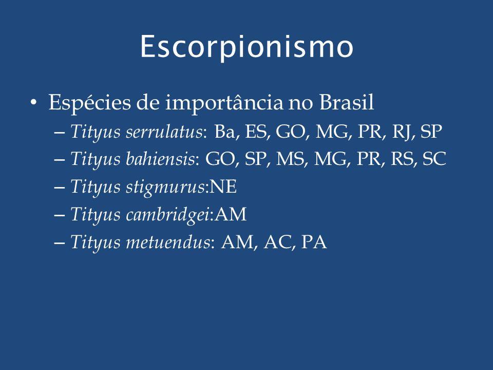 Escorpionismo Espécies de importância no Brasil – Tityus serrulatus : Ba, ES, GO, MG, PR, RJ, SP – Tityus bahiensis : GO, SP, MS, MG, PR, RS, SC – Tit