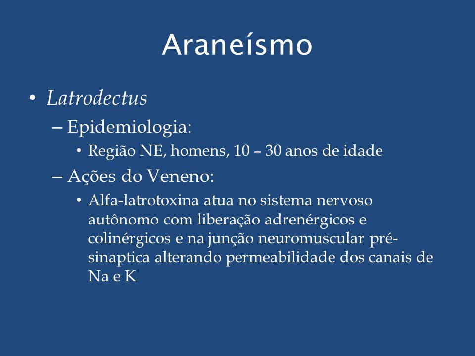 Araneísmo Latrodectus – Epidemiologia: Região NE, homens, 10 – 30 anos de idade – Ações do Veneno: Alfa-latrotoxina atua no sistema nervoso autônomo c