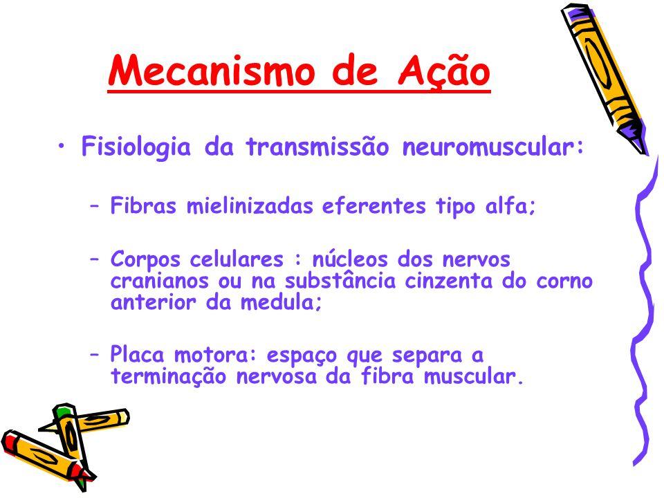 Mecanismo de Ação Fisiologia da transmissão neuromuscular: –Fibras mielinizadas eferentes tipo alfa; –Corpos celulares : núcleos dos nervos cranianos