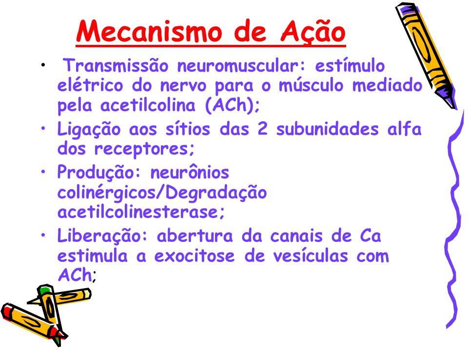 Transmissão neuromuscular: estímulo elétrico do nervo para o músculo mediado pela acetilcolina (ACh); Ligação aos sítios das 2 subunidades alfa dos re