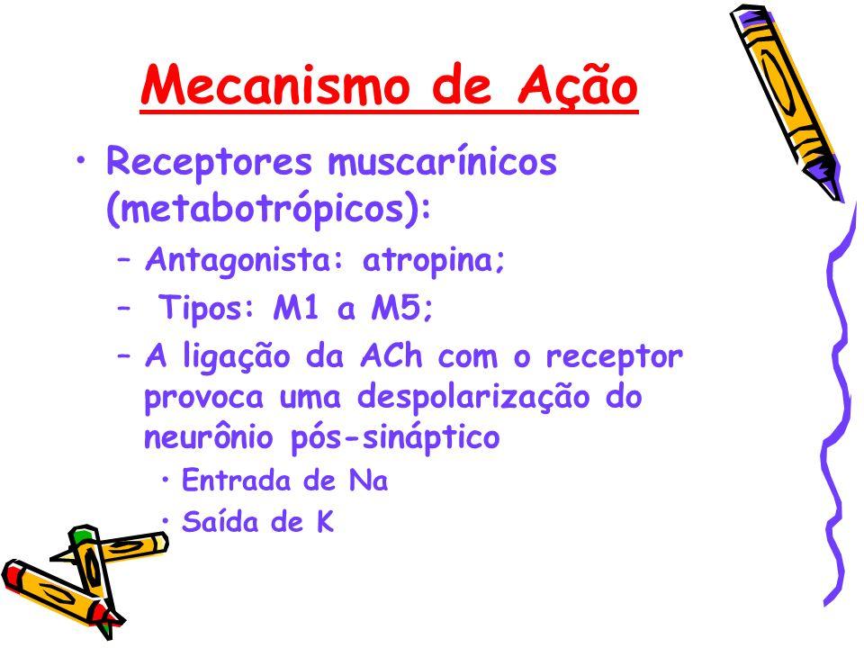 Mecanismo de Ação Receptores muscarínicos (metabotrópicos): –Antagonista: atropina; – Tipos: M1 a M5; –A ligação da ACh com o receptor provoca uma des