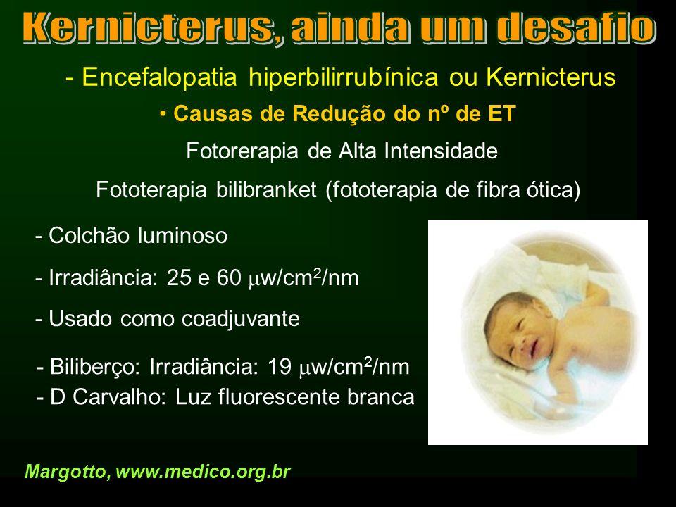 - Encefalopatia hiperbilirrubínica ou Kernicterus Causas de Redução do nº de ET Fotorerapia de Alta Intensidade Margotto, www.medico.org.br Fototerapi