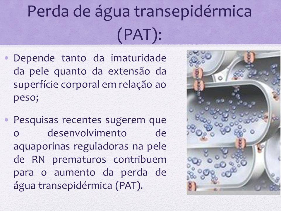 Perda de água transepidérmica (PAT): Depende tanto da imaturidade da pele quanto da extensão da superfície corporal em relação ao peso; Pesquisas rece