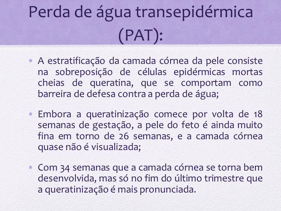 A maturação da pele do prematuro se desenvolve ao nascimento; A PAT cai exponencialmente com o aumento da idade gestacional e após o nascimento; RNPT 1000g / 24-25s -> a PAT 140ml/kg/dia (60g/m 2 /h) nos primeiros dois dias após o nascimento, decaindo no terceiro dia por volta de 45g/m 2 /h e 24g/m 2 /h com 28 dias; Em RN >32s com 2-3 semanas de idade, a maturidade da pele é similar a de um RN à termo (PAT = 6-8g/m 2 /h ou 12ml/kg/dia).