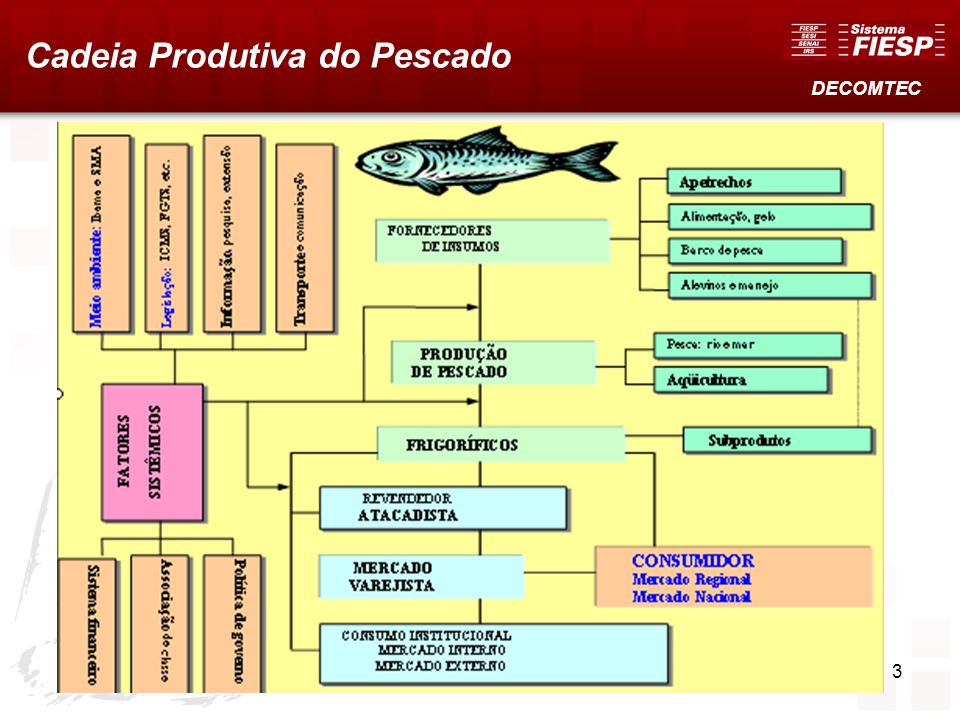 3 Cadeia Produtiva do Pescado DECOMTEC