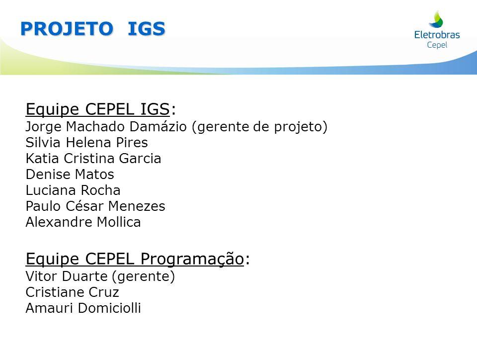 Equipe CEPEL IGS: Jorge Machado Damázio (gerente de projeto) Silvia Helena Pires Katia Cristina Garcia Denise Matos Luciana Rocha Paulo César Menezes